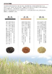 古代米の特徴